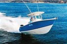 Fibreglass fishing boat